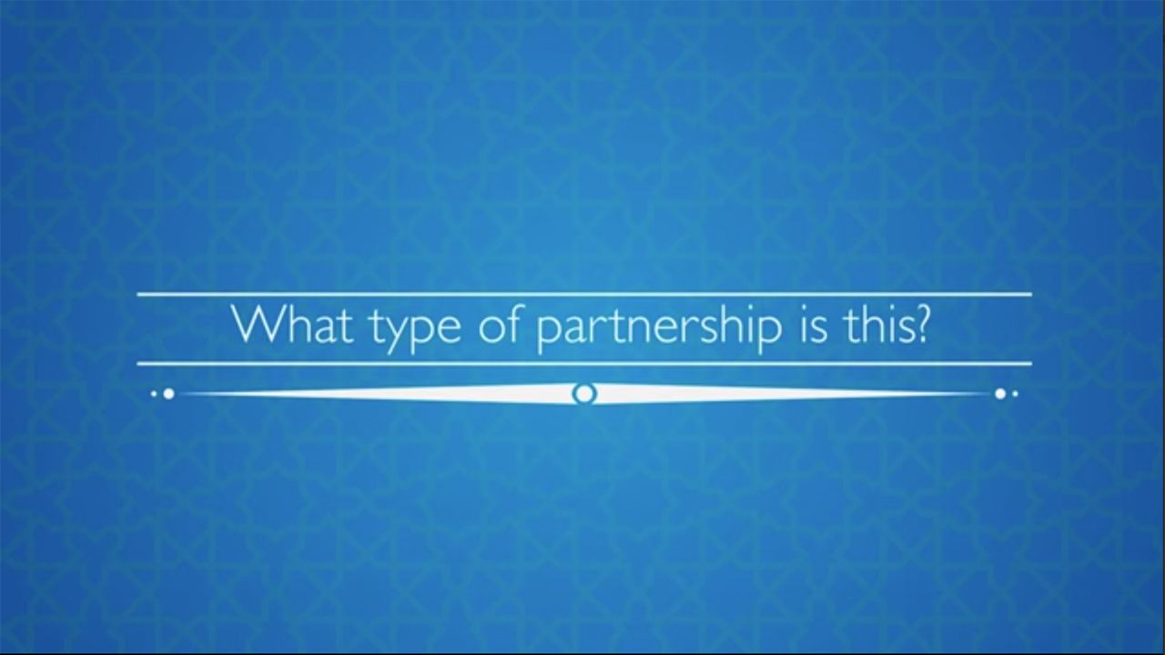 WHAT TYPE OF PARTNERSHIP IS THIS HOME FINANCING PROGRAM BASED ON?